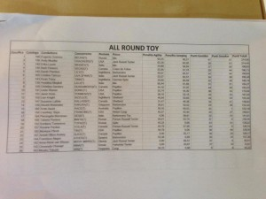 Results All Round Toy